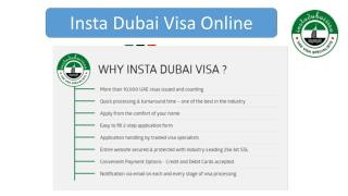 How to Apply Dubai Visa Online at Instadubaivisa.com