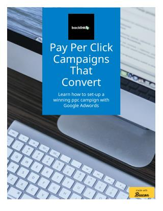 Pay Per Click Campaigns That Convert To Sales and Better ROI