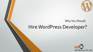 Hire Expert WordPress Developer For Theme Customization