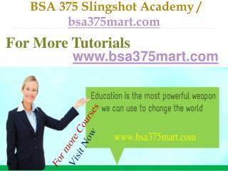 BSA 375 Slingshot Academy / bsa375mart.com