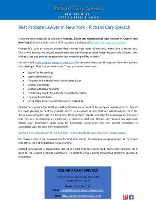 Best Probate Lawyer In New York - Richard Cary Spivack