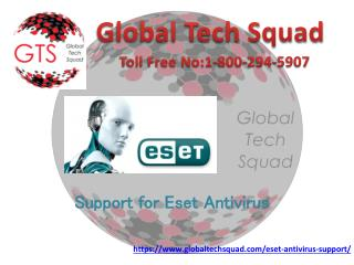 Support for Eset Antivirus with us | Toll Free:-1-800-294-5907