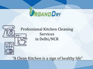 Professional Kitchen Cleaning Services in Delhi/NCR