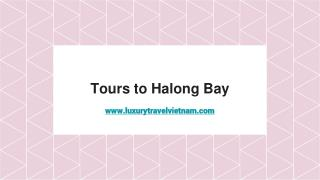 Tours to Halong Bay | Halong Bay Tours | Vietnam Cambodia Tour Packages