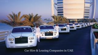 Vehicle Rental Companies in Dubai