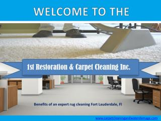 Benefits of hiring an expert rug cleaning Fort Lauderdale, Fl
