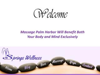 Massage Palm Harbor Takes Your Body And Soul To The Extreme Level Of Relaxation