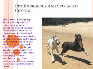 Pet Emergency And Specialist Centre