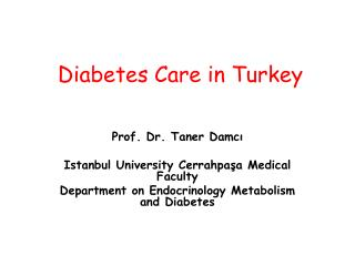 Diabetes Care in Turkey