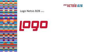 Logo Netsis B2B