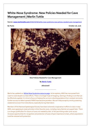 White-Nose Syndrome: New Policies Needed for Cave Management