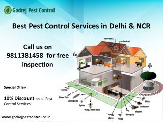 Get 10% OFF on pest control and termite treatment in Noida, Faridabad, Ghaziabad, Gurgaon,Indirapuram and Dwarka-Contact