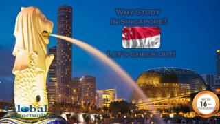 Singapore Education Consultants|Study Abroad|Overseas Education Consultants|Student Study Visa|Foreign career Consultant