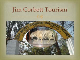 Book Jim corbett tour packages