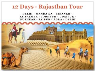 How to Get Rajasthan Tour through Google?