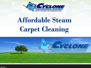 Affordable Steam Carpet Cleaning