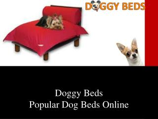 Doggy Beds- Importance of Dog Beds