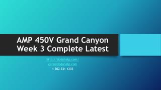 AMP 450V Grand Canyon Week 3 Complete Latest (Discussions and Assignments)