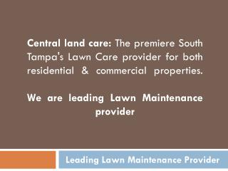Landscape Lighting Service| Lawn Care Service Tampa