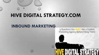 Denver Digital Marketing