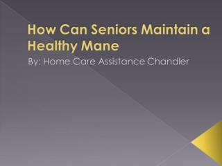 How Can Seniors Maintain a Healthy Mane