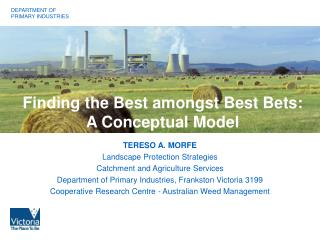 Finding the Best amongst Best Bets: A Conceptual Model
