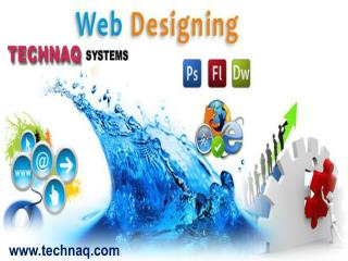 web design company in delhi provided the best solution
