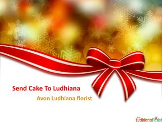 Send Cake to Ludhiana with Avon Ludhiana Florist