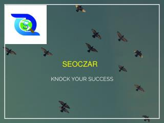 online branding |online branding company in India | online marketing | seoczar