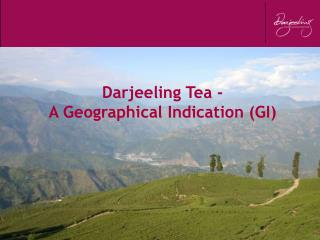 Darjeeling Tea - A Geographical Indication (GI)