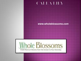 White Calla Lilies - www.wholeblossoms.com