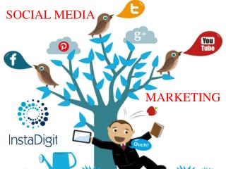 Social Media marketing agency Bangalore - Social Media Agency India - Social Media Companies in Bangalore