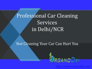 Professional Car Cleaning Services in Delhi/NCR