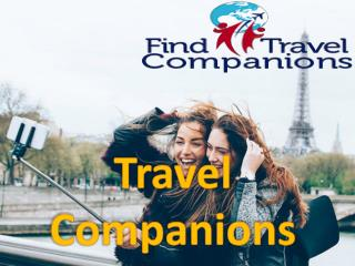Get Perfect Travel Companions