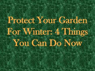 Protect Your Garden For Winter 4 Things You Can Do Now