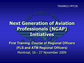 Next Generation of Aviation Professionals (NGAP) Initiatives
