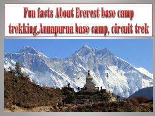 Fun facts About Everest base camp trekking,Annapurna base camp, circuit trek