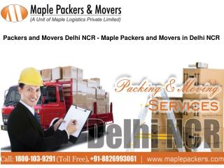 Packers and Movers Delhi NCR - Maple Packers and Movers