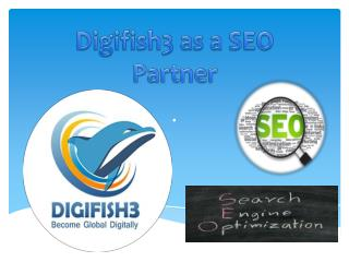 Digital Marketing Company India | Digifish3