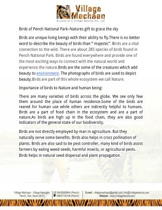 Birds of Pench National Park–Natures gift to grace the sky