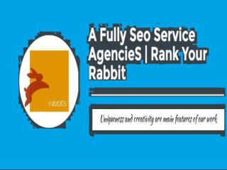 A full service digital marketing agency by Rank Your Rabbit