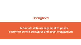 Springbord Way Of Data Management