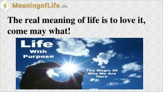 Real Purpose and Meaning of Life