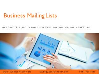 Business Mailing Lists | Targeted B2B Lists | Targeted Email Executive Contacts