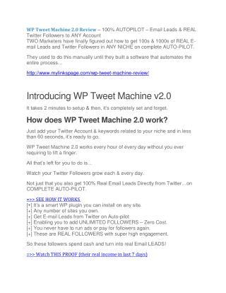 WP Tweet Machine review