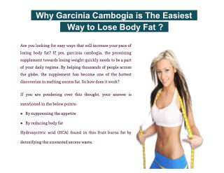 Why Garcinia Cambogia is The Easiest Way to Lose Body Fat?