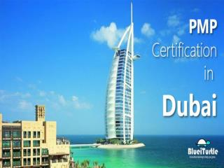 Best PMP Training Available in Dubai at Blueiturtle