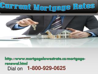 Reply on the best 1-800-929-0625 Current Mortgage Rates