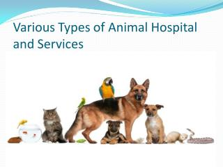 Types of animal hospital