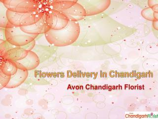Flowers Delivery in Chandigarh with Avon Chandigarh Florist